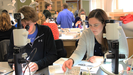 Michael Kilewald and Kelsey Graham do lab work at OU with Microscopes