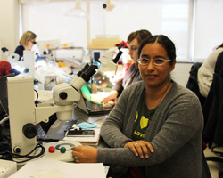 Melina Duran uses a microscope at OU