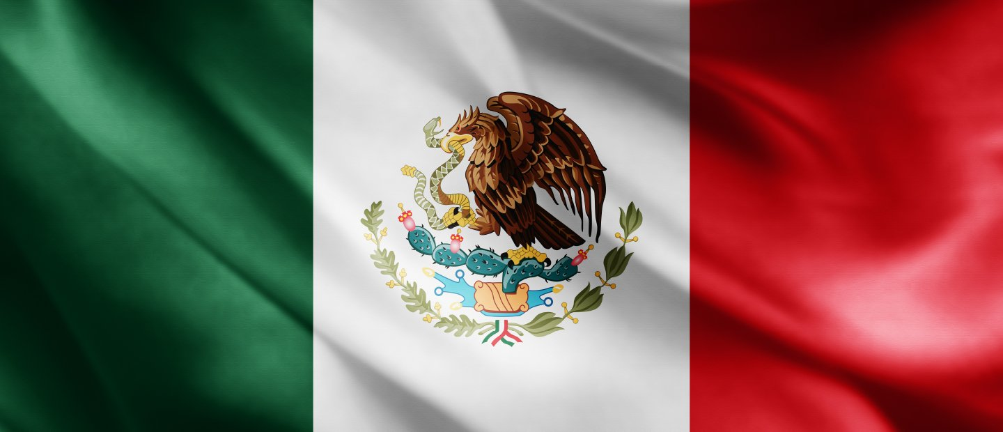 Mexican flag, eagle with a snake in its mouth perched on a cactus centered in a white background, green section to the left, red section to the right