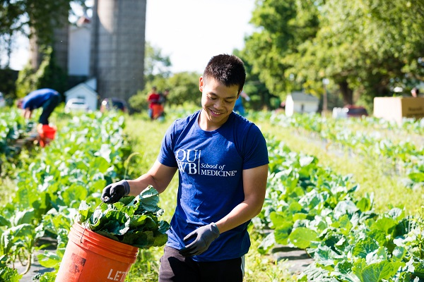 A student works in the field picking greens as part of the annual First Day of Service