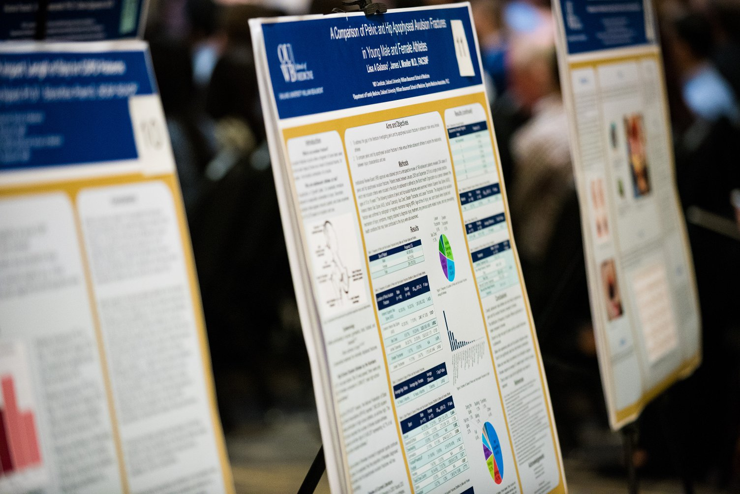 An image of posters from a past Embark Capstone Colloquium.