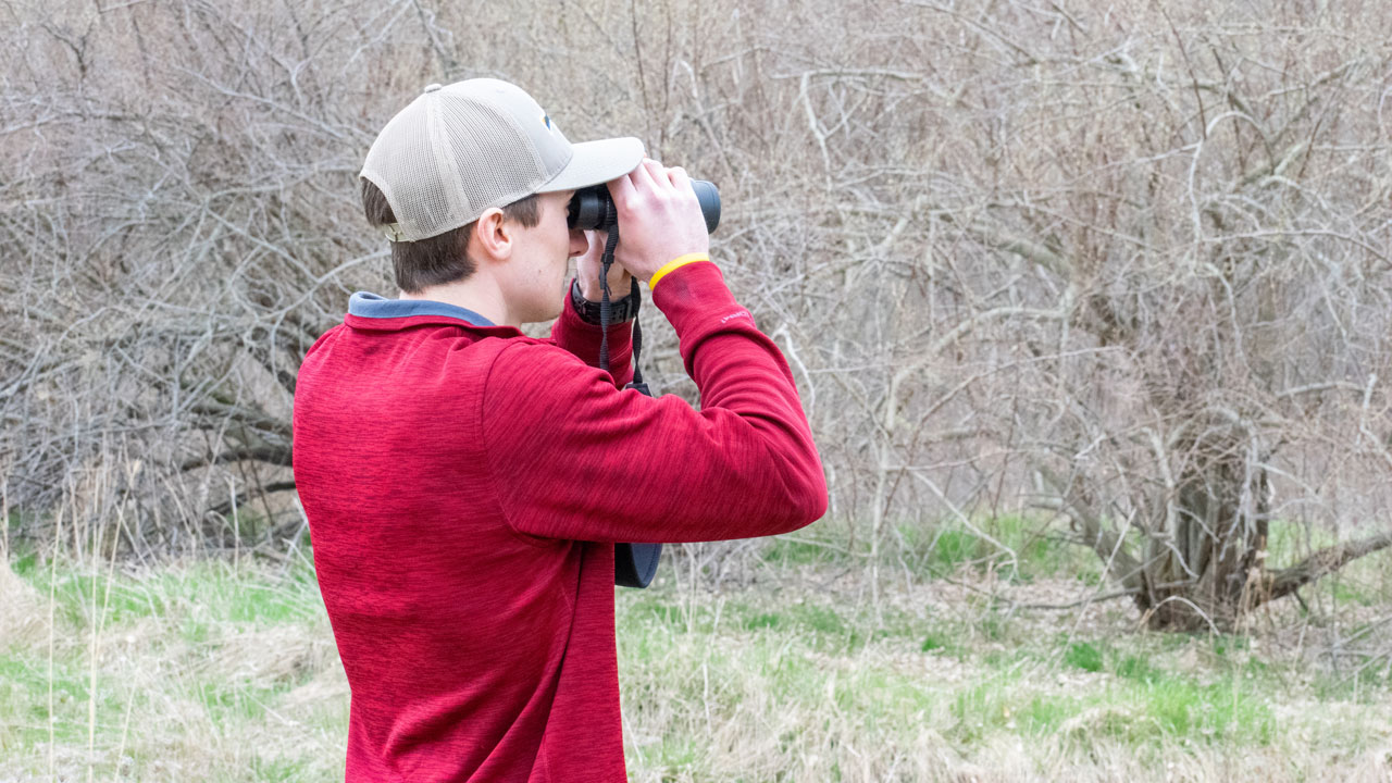 OU campus a local hotspot for birds and birdwatchers