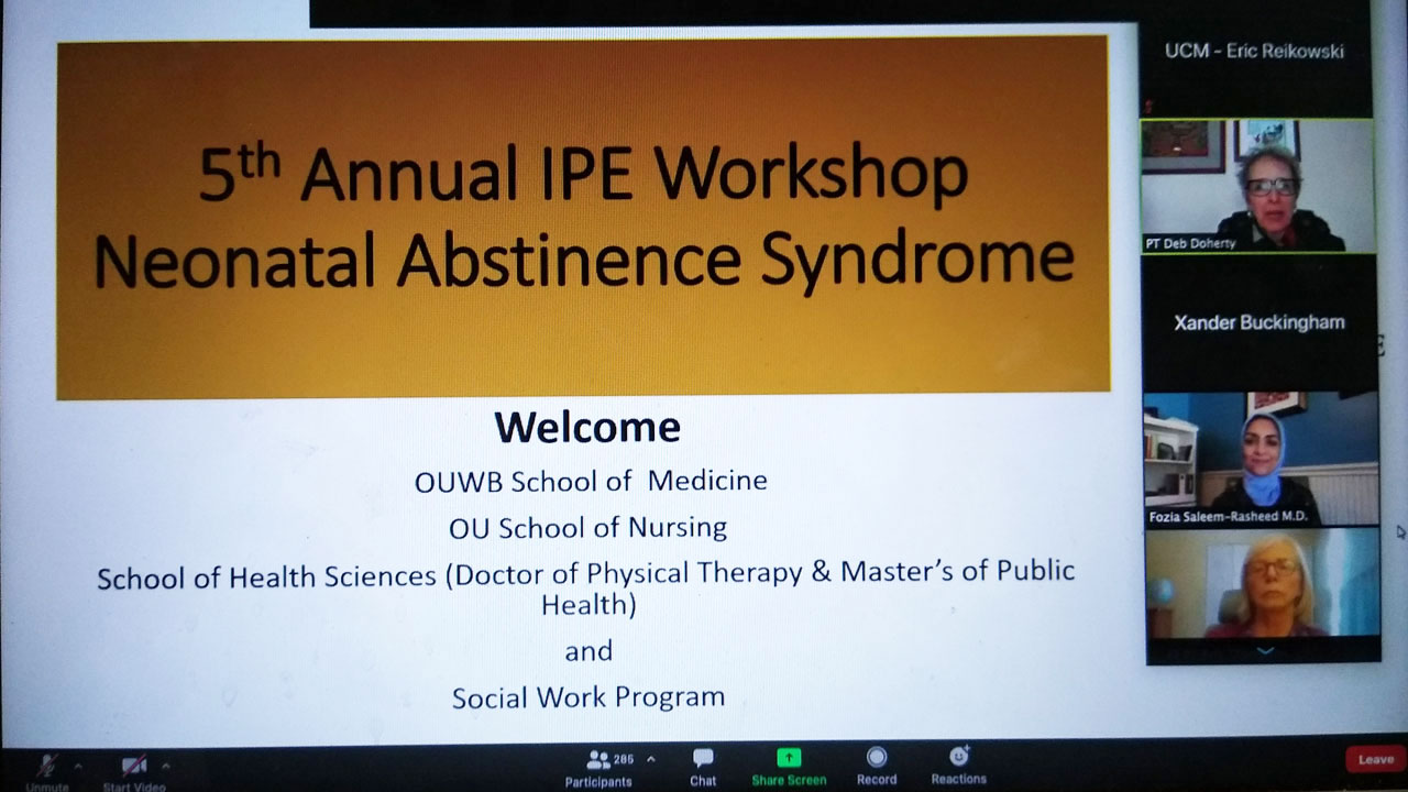 Interprofessional Education Workshop