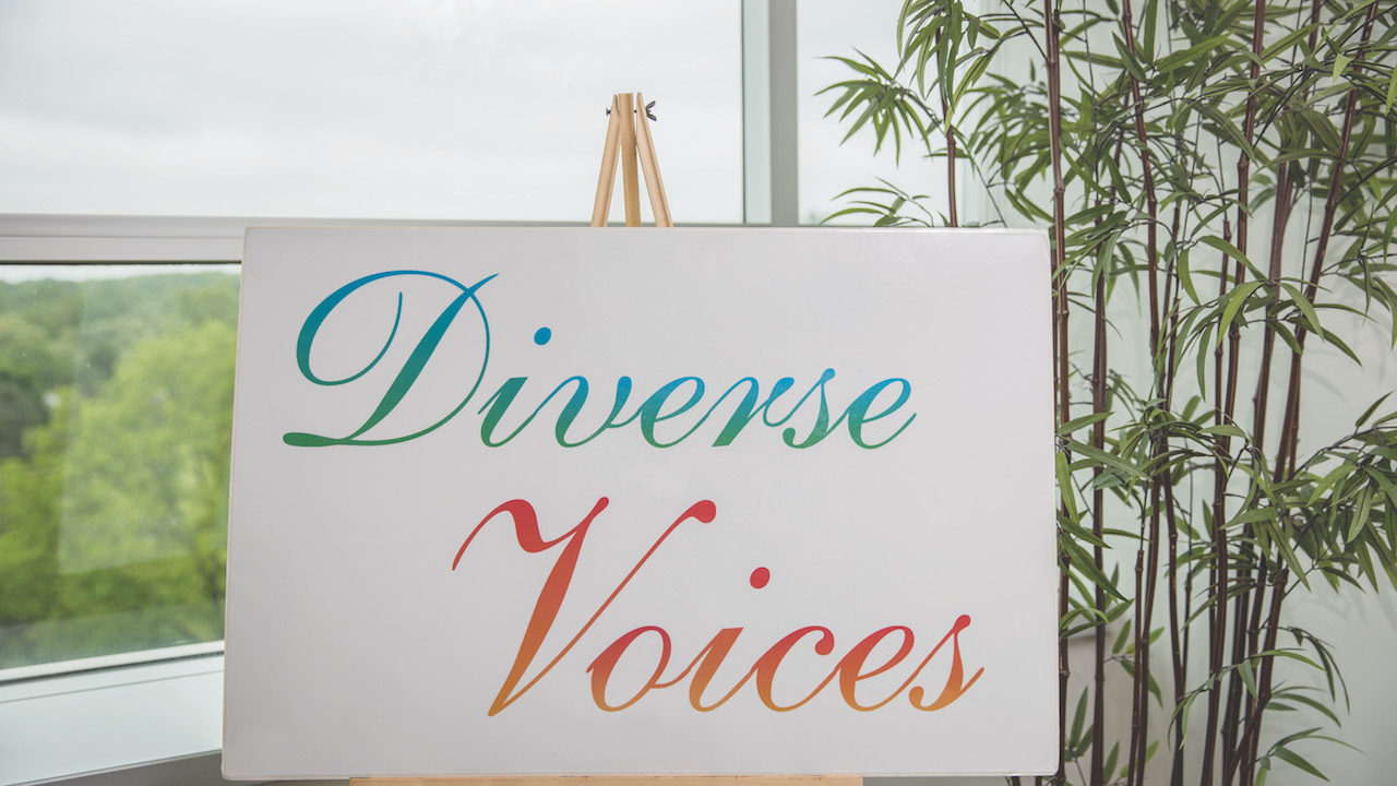 diverse voices conference poster