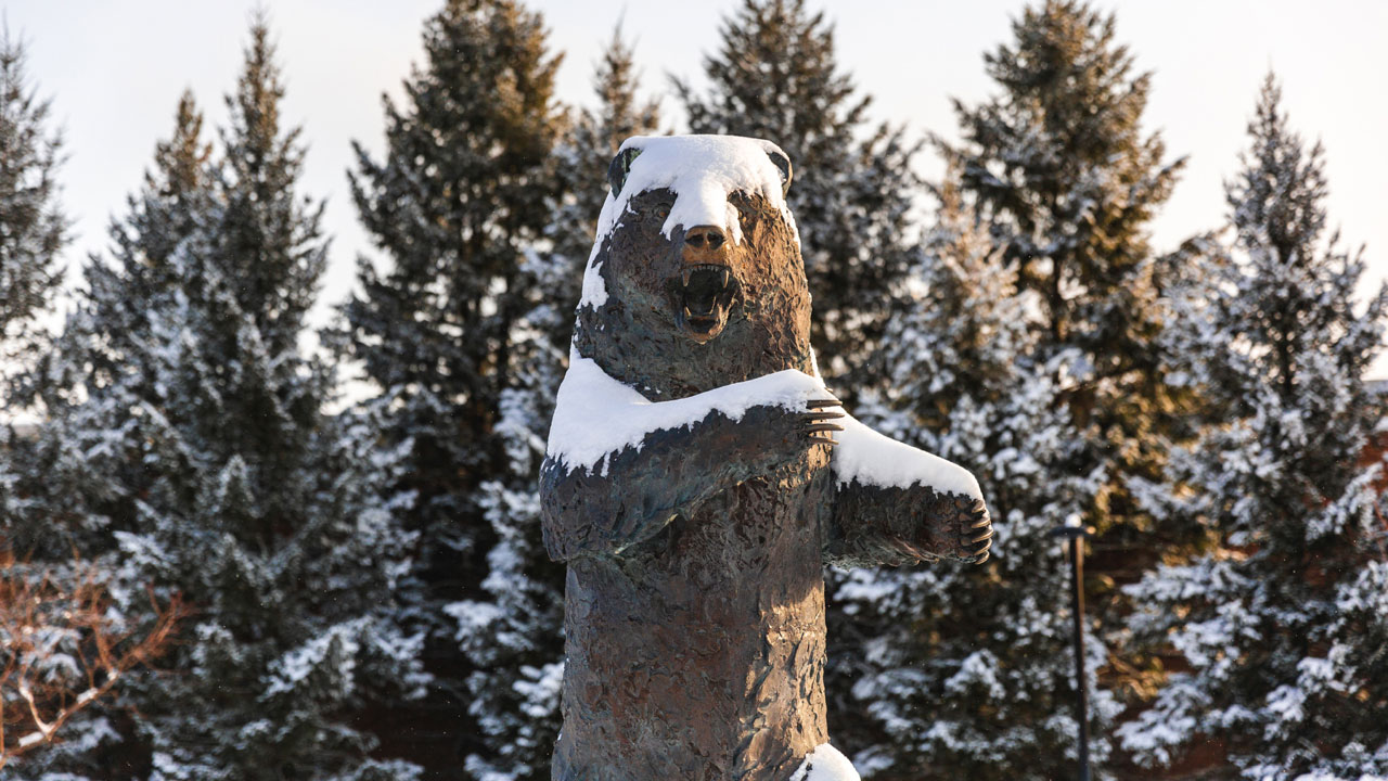 Grizzly statue in winter