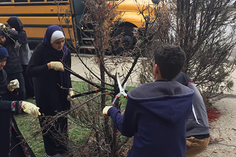 kids trimming trees with long shears, a school bus in the background