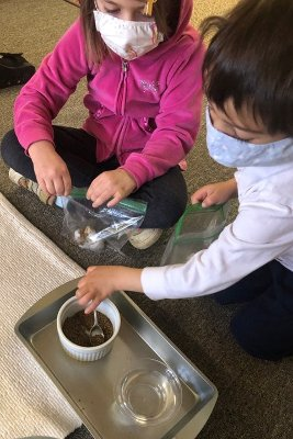 Two young kids sitting on the floor, doing a project with a bowl of soil and a bowl of water.