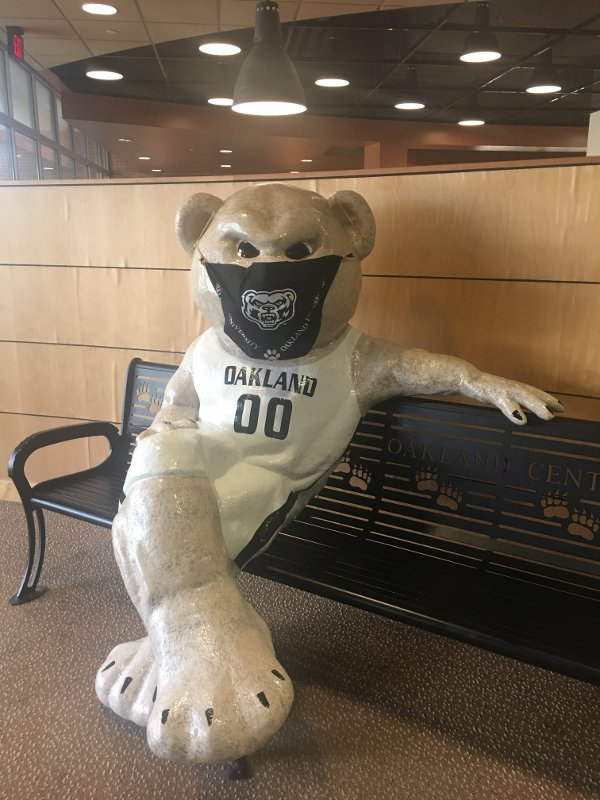 A statue of the Grizz bear mascot seated on a bench, wearing a black Oakland University Grizzlies protective face covering.
