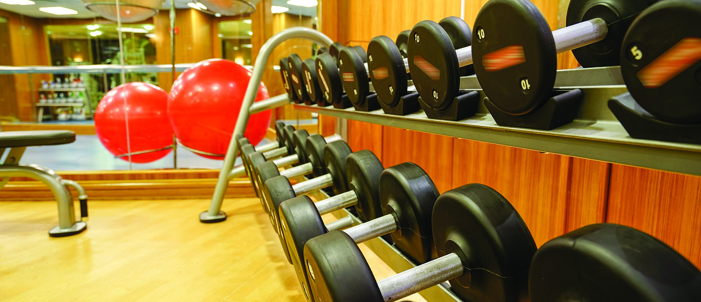 Workout room with wall of weights and exercise ball