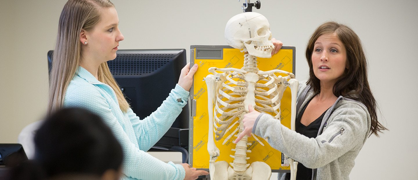 Two women holding a model skeleton in front of a class