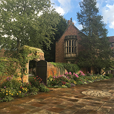 the garden in bloom, with vines growing on the brick wall, in front of Meadow Brook Hall
